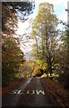 NN2781 : Slow for fallen leaves - don't let the view distract you by Andy Waddington