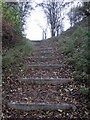 TL0428 : Steps up to the pit by Philip Jeffrey