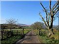 SD6948 : Following a Footpath to Farrowfield : Week 46