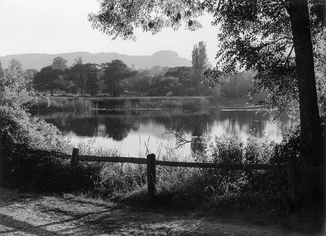 Wiston Pond and Chanctonbury Ring