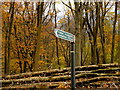 ST7870 : Footpath sign by Jonathan Billinger