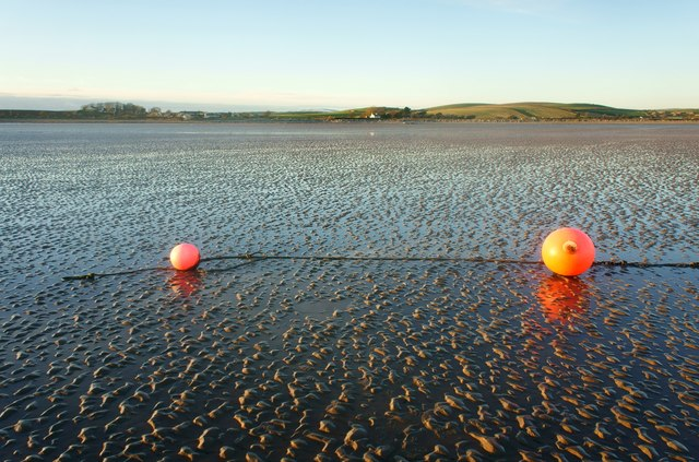 Buoys on a sand flat