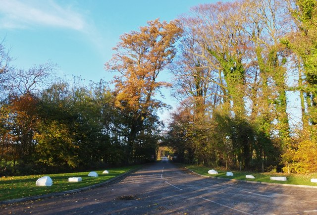 Road to Rawcliffe Hall
