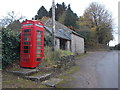 ST5707 : Melbury Osmond: the telephone box by Chris Downer