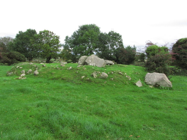 Clonlum South Cairn near Meigh