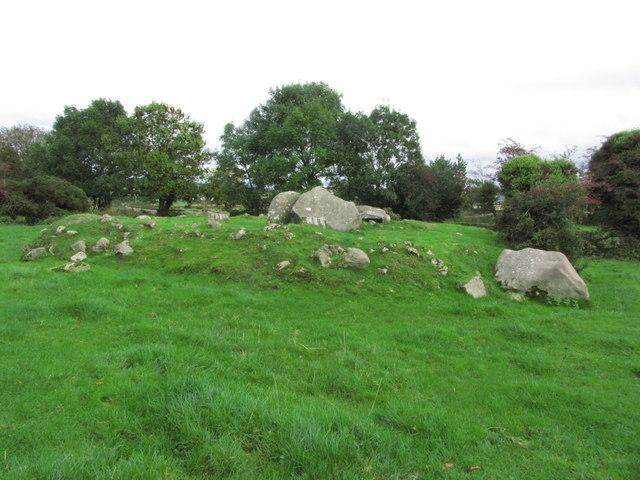 Clonlum South Cairn near Meigh