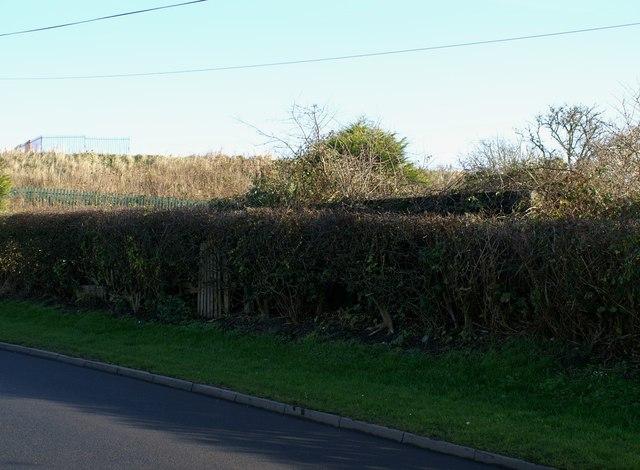 Springhill Lane