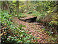 SJ2854 : Footbridge over stream in woodland by Maggie Cox