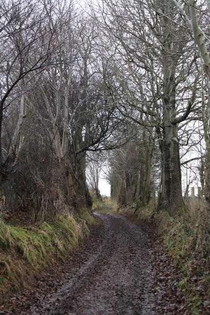 Track near Penrith