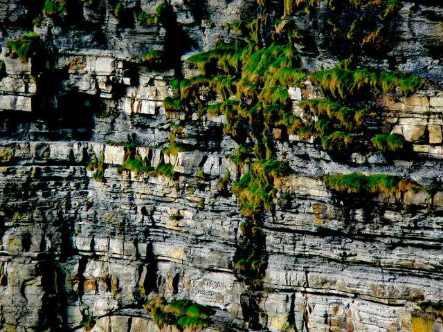 Cliffs of Moher - Zoomed-in View of Face of Cliffs
