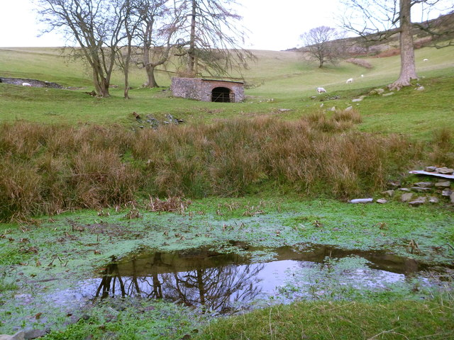 Pond and Shelter west of Moel Arthur