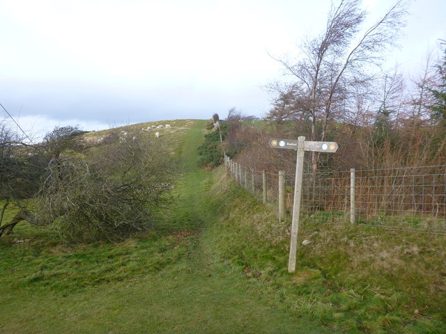 Path heading north for Moel y Parc