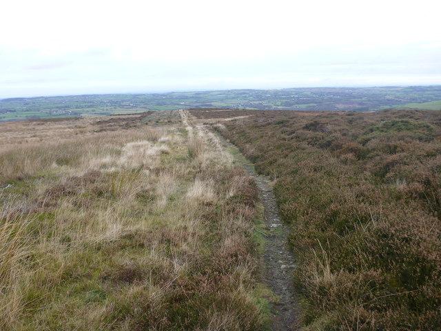 Footpath to Afon Wen