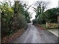 SJ8161 : Bankhouse Lane, Brookhouse Green by Christine Johnstone