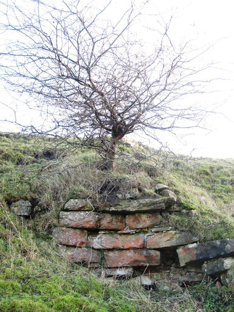 Gunnerton Nick Lime Kiln
