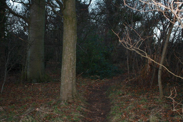 Path to Queen Mary's Mount