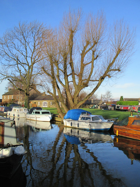 Boats and bare trees, Marple