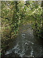 SS9386 : A glimpse of the River Ogmore just north of Blackmill by eswales