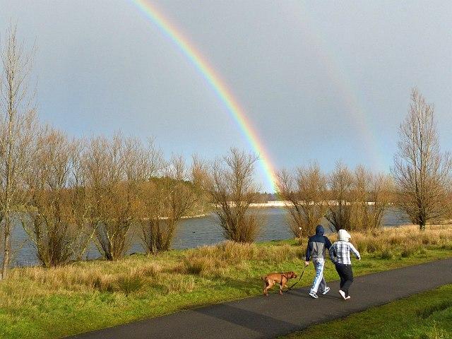 Dog Park Bryn Mawr Lakefront