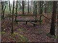 SU8362 : Stile, Edgbarrow Woods by Alan Hunt
