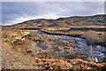 NG7221 : Allt Mòr in Glen Arroch : Week 4