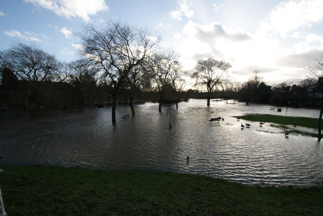 Flooded Green, Feb 1st, 2014 (1)