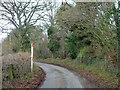 SU7485 : Fawley Bottom Lane by Robin Webster