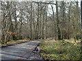SU7688 : Dudley Lane by Robin Webster