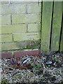SP1886 : OS benchmark - 118 Coleshill Heath Road by Richard Law