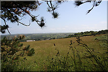 SW7241 : Farmland on the lower slopes of Carn Marth by Graham Loveland
