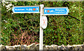 J3582 : National Cycle Network signs, Whiteabbey by Albert Bridge