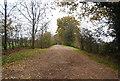 SU8427 : Track to Alfords Farm by N Chadwick