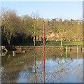 SO7293 : Playground, Severn Park : Week 7