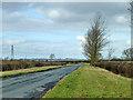 SP6518 : Wide verge on Bicester Road by Robin Webster