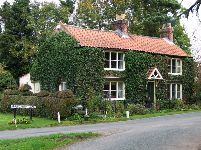 Ivy Covered Cottage © Siobhan Brennan-Raymond :: Geograph