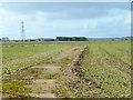 SP6410 : Old access road, former RAF Oakley by Robin Webster