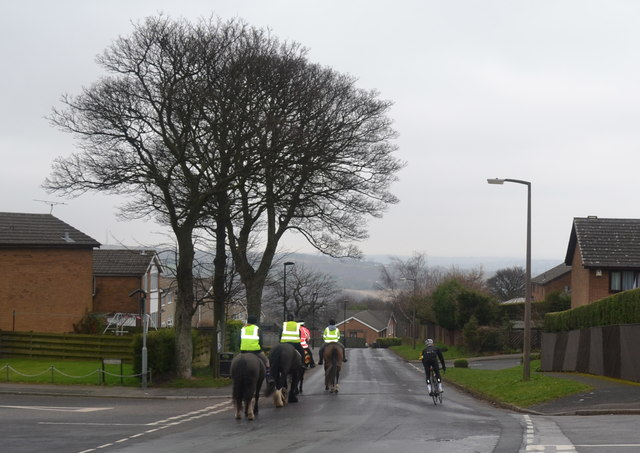 Cyclist and Riders on Kirk Edge Road, Worrall, near Oughtibridge