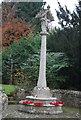 SU8928 : War Memorial, Fernhurst by N Chadwick