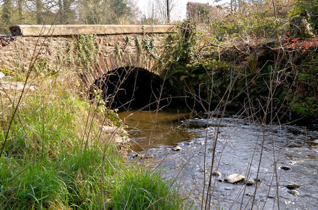 The Crooked Bridge, Minnowburn, Belfast - March 2014(1)