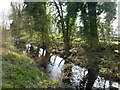 TL2476 : Ancient moat at Bellamy's Grove, Huntingdon by Richard Humphrey
