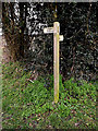 TM2397 : Palmer's Lane bridleway sign on Hall Lane by Adrian Cable