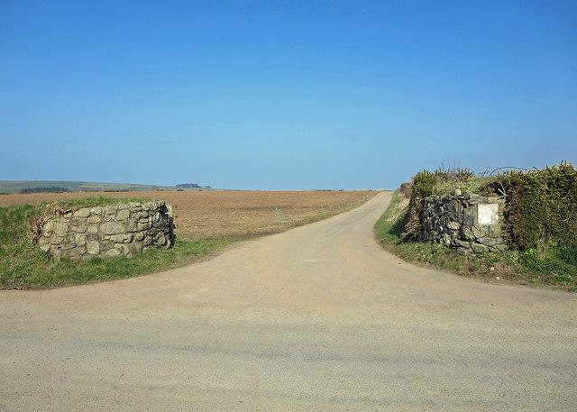 Farm track leading to Trefaes Ganol