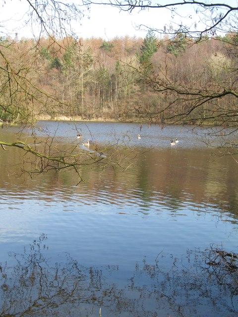 Fish Pond Ne End C Gordon Hatton Geograph Britain And Ireland