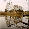 SP0860 : The lake at Coughton Court, 4 : Week 10