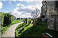 TQ8218 : Churchyard, St George's church, Brede : Week 12