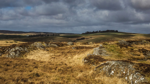 The Wigtownshire Moors
