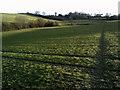 SU9596 : Public footpath leading into Amersham by Peter S