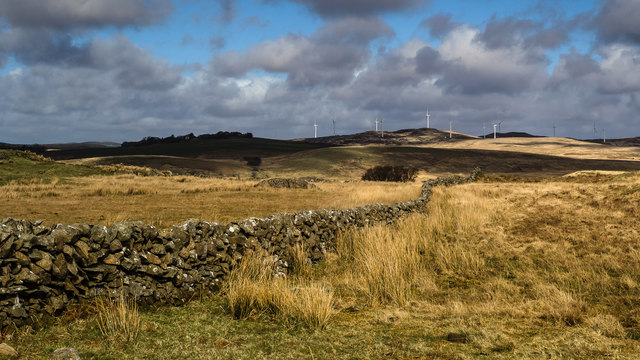 A Galloway Dyke