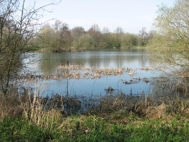 Fishing lake near shotford heath evelyn simak for Nearest fishing lake
