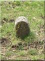 ST7560 : Boundary Stone by David Tyers